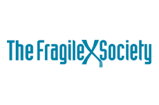 the-fragile-society